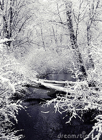 Snowfall and Creek (view 1)