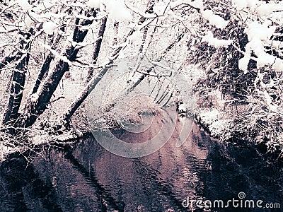 Snowfall and Creek (view 2)