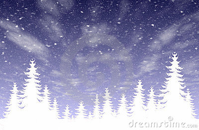 Snowfall & forest