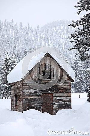 Snowfall in rural area