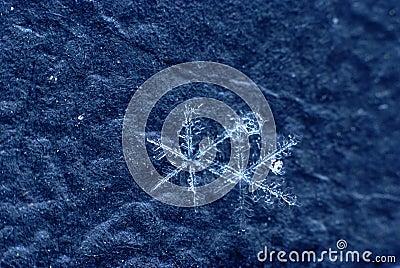 Snowflake on black bacground