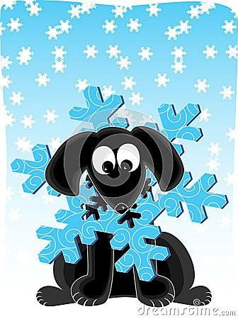 Snowflake Dog