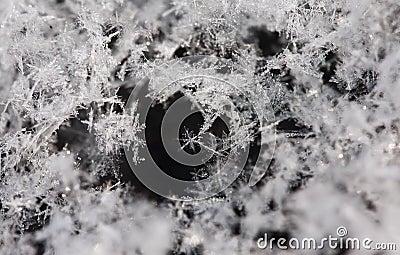 Snowflakes