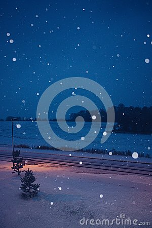 Free Snowing At Night Royalty Free Stock Images - 53934169