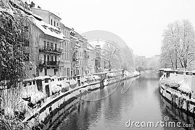 Snowing in Ljublana