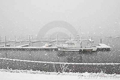 Snowing at the Marina