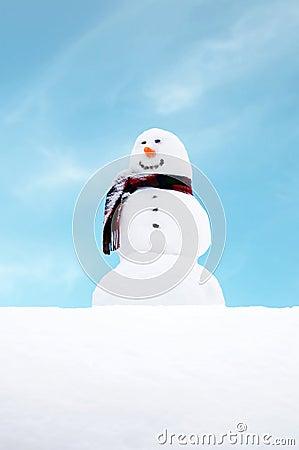 Free Snowman Stock Photos - 1846053