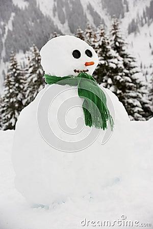 Snowman Built in Alpine Location