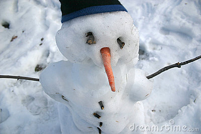 Snowman with Carrot Nose and Toque