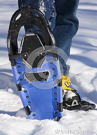 Snowshoe Bottom