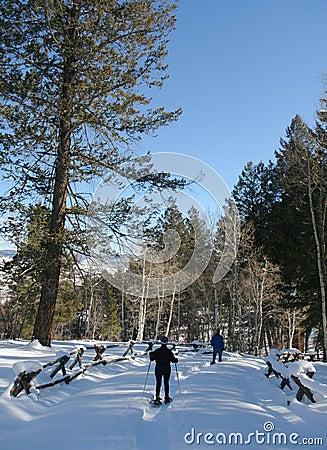 Snowshoe hiker, blue sky