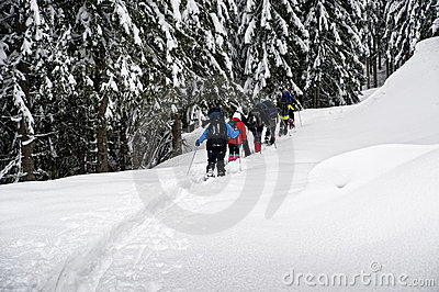 Snowshoe hikers