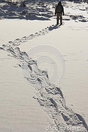 Snowshoe trails 1