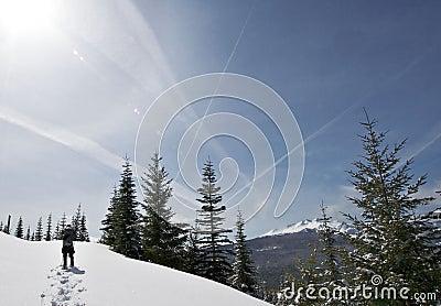 Snowshoeing by Diamond Peak