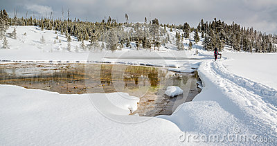 Snowshoeing in Yellowstone