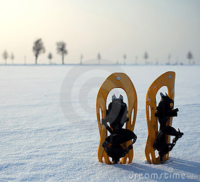 Snowshoes in a snowy landscape
