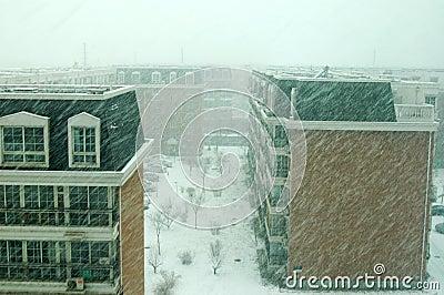 A snowstorm in Beijing