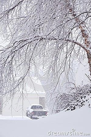 Snowstorm in Kentucky
