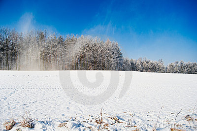 Snowstorm on the winter field panorama