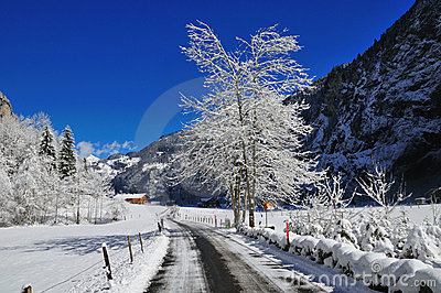 Snowy Alpine Road