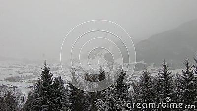 Snowy-Berge und -bäume stock video footage