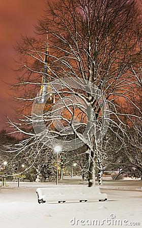 Snowy chair in park at night in Tallinn, Estonia