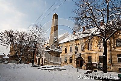 Snowy Cluj