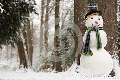 Snowy day and snowman