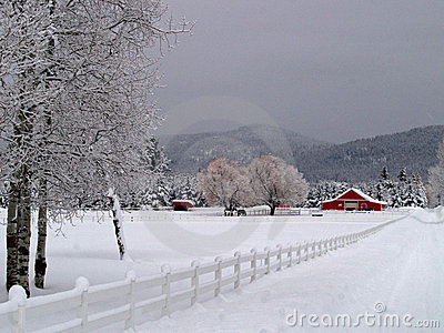 Snowy Entrance to the Horse Ranch
