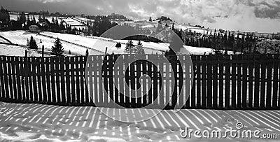 Snowy landscape on sunny day