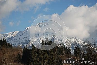 Snowy Mountain, Friuli