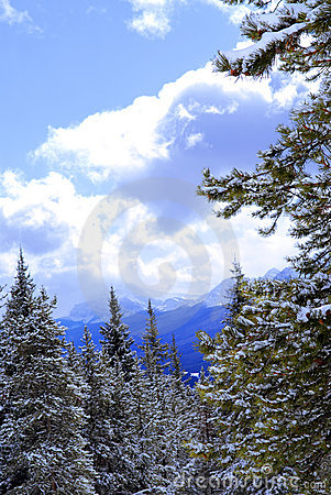 Free Snowy Mountains Stock Photography - 2937512