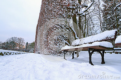 Snowy park scenery with empy bench