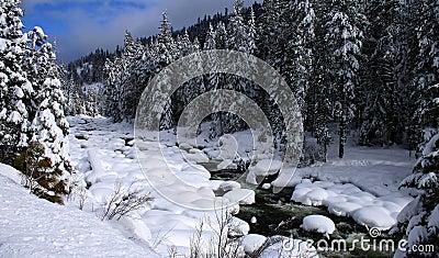 Snowy River 8