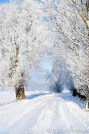 Free Snowy Road Stock Photos - 7755763