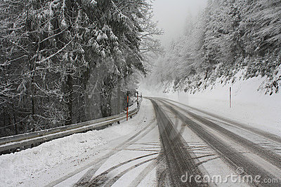 Snowy road through forest