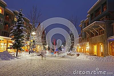 Snowy Scene of Winter Shopping