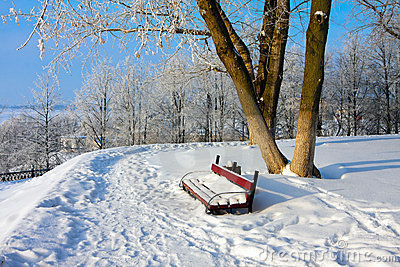 Snowy scenery with bench