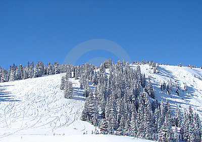 A snowy ski hill