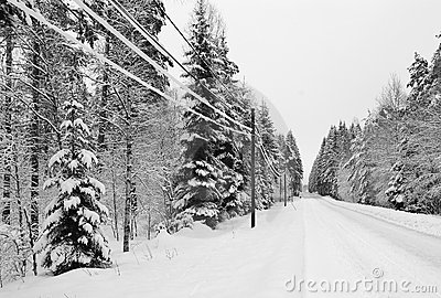 Snowy Swedish highway
