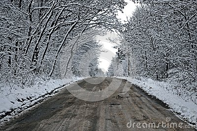 Snowy tunnel road from forest to cloudy sky