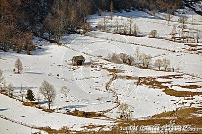 Snowy village chalet