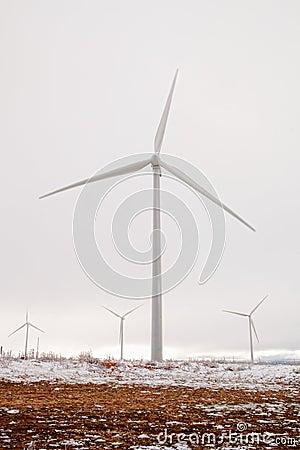 Snowy wind park
