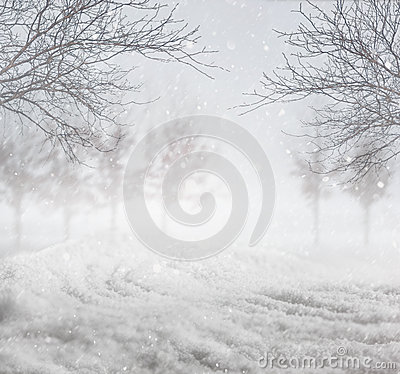 Free Snowy Winter Background Royalty Free Stock Photos - 35766558