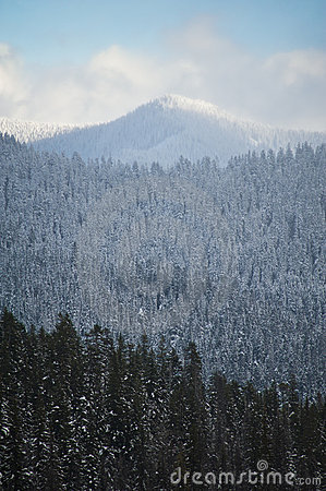 Free Snowy Winter Hills Stock Photography - 17323962