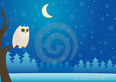 Snowy Winter Owl