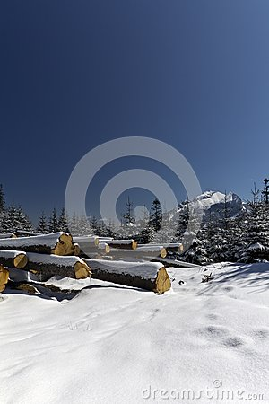 Snowy winter in tatras mountains in poland  with h