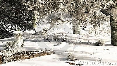 Snowy Woodland Glade