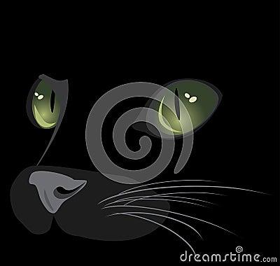 Snuit van zwarte kat
