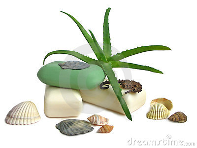 Soap with aloe vera leaves